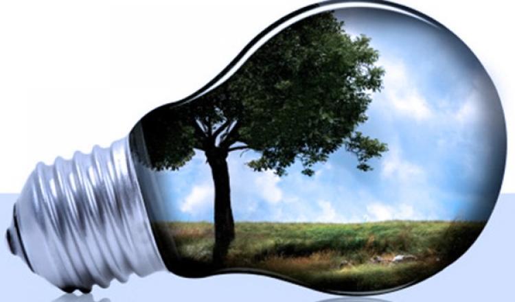 nota comparas sustentables